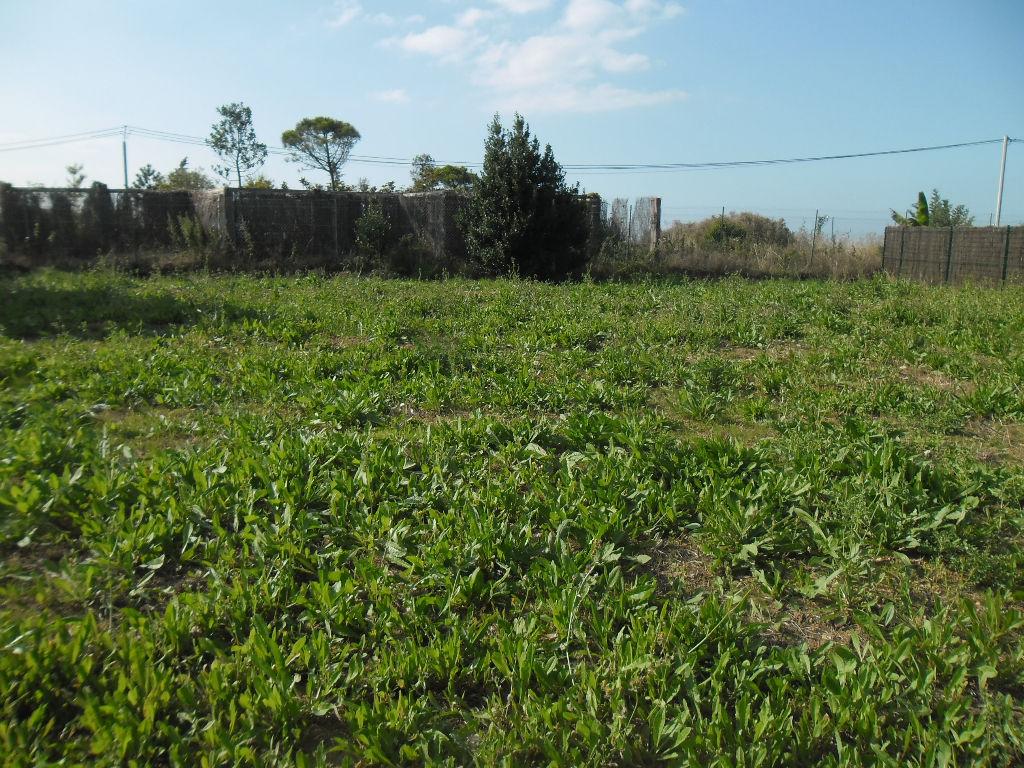 Immobilier a vendre vente acheter ach terrain 502 for Prix des terrains au m2